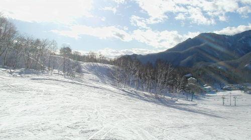 みなかみ町/水上温泉/スキー場情報/水上高原藤原スキー場
