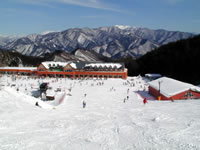 みなかみ町/水上温泉/スキー場情報/ノルン水上スキー場