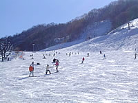 みなかみ町/水上温泉/スキー場情報/水上奧利根スキー場